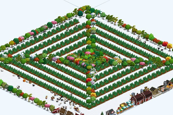 Peppermint Labyrinth